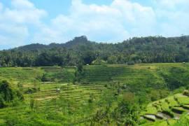 Desa Iseh