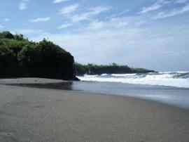 Pantai Kedungu