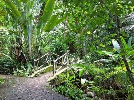 Taman Botanik