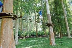 Bali Treetop