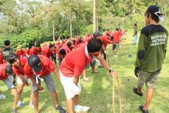 Team Building Treetop