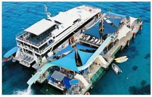 Bali Hai Reef Pontoon