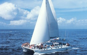 Bali Luxury Yath Catamaran