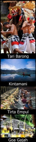 Full Day Kintamani Tour 1