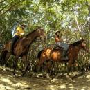 Horseback Riding 4