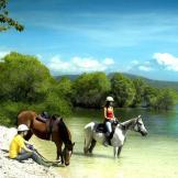 Horseback Riding 8