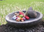 Balinese Cooking Experience 6