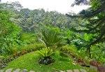 Vajra Garden