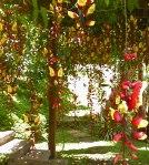 Villa Vajra Garden 5