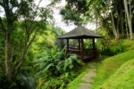 Bale Garden