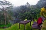 Villa Environment 11
